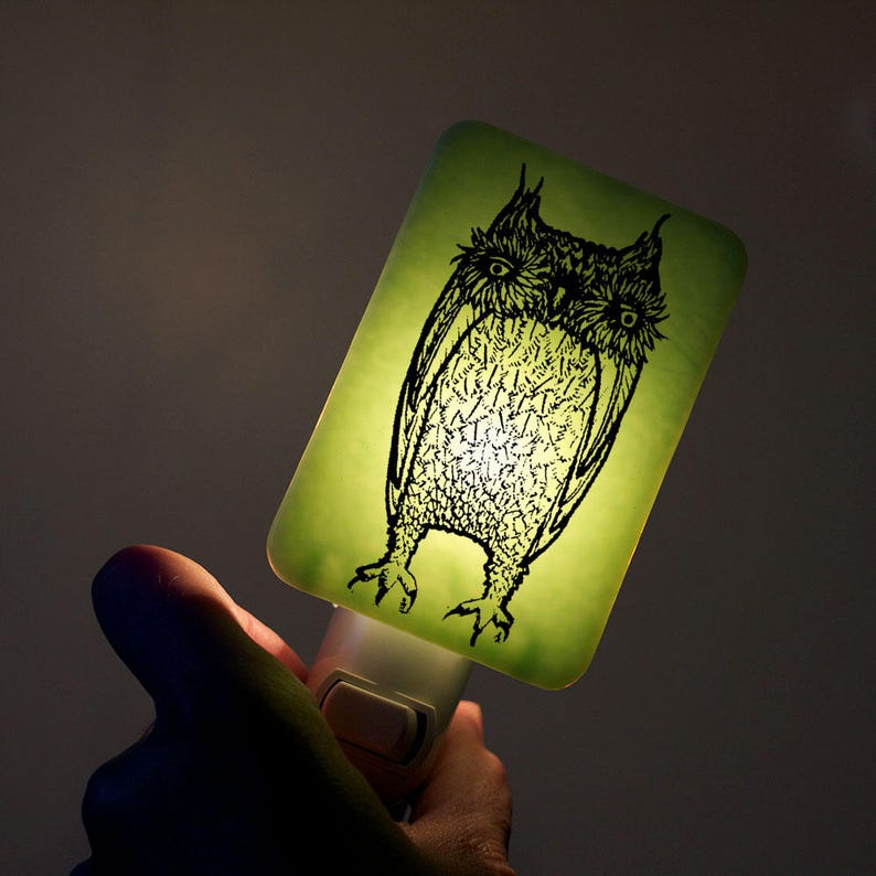Owl Nightlight of Fused Glass in Mint Green  Large Funny Owl image 0