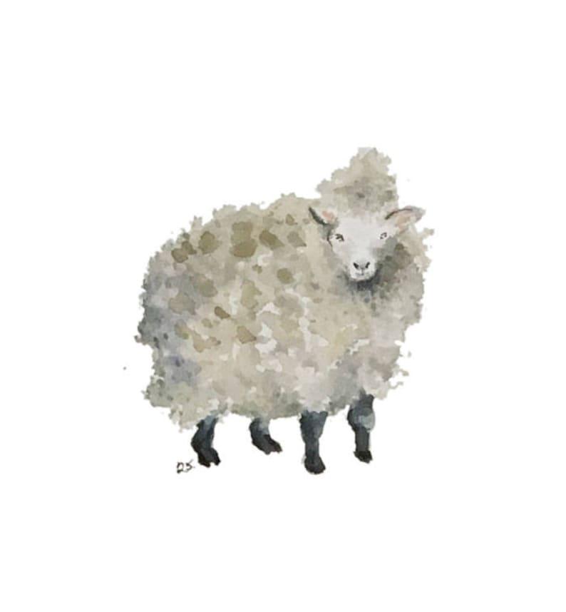 Sheep blank greeting card reproduction of my original image 0