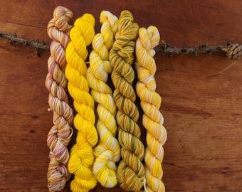 Hues - Hand Dyed Mini Yarn Skeins - Warm Sunshine