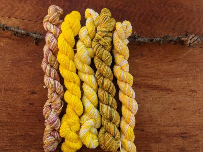 Hues  Hand Dyed Mini Yarn Skeins  Warm Sunshine image 0