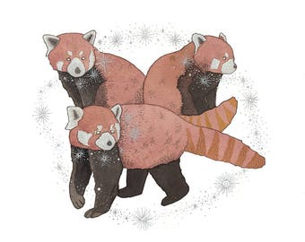 Collective - Red Panda Print