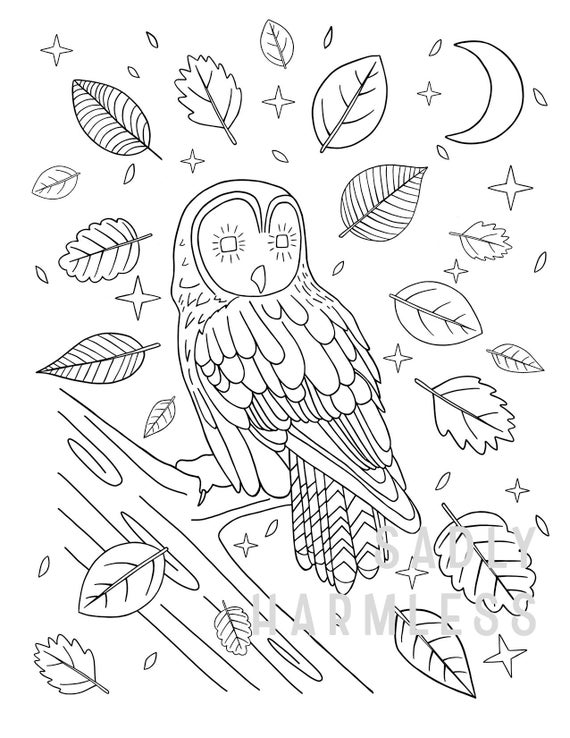Printable Owl Coloring Page Etsy