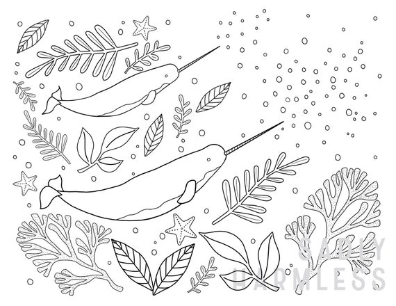 Printable Narwhal Coloring Page Etsy