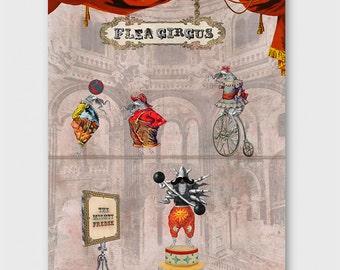 The Flea Circus