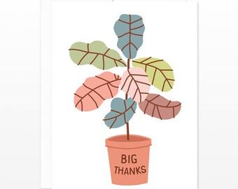 Big Thanks Fiddle Leaf Fig Plant Greeting Card - Thank You Card, Thanks Card, Plant Lady Card, Tropical Plant Card