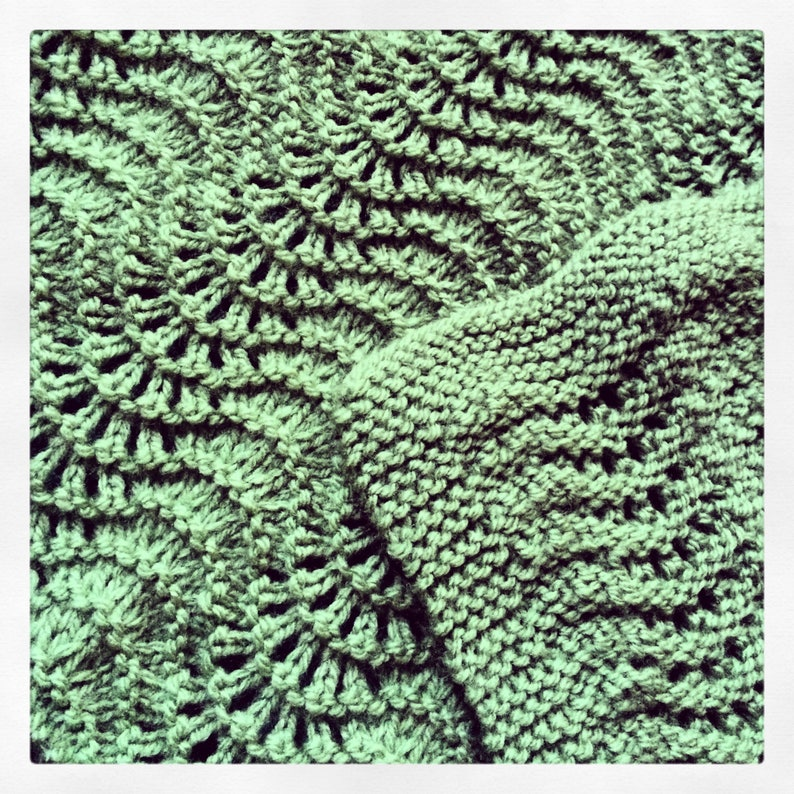Custom Made Fan and Feather Baby Blanket image 0
