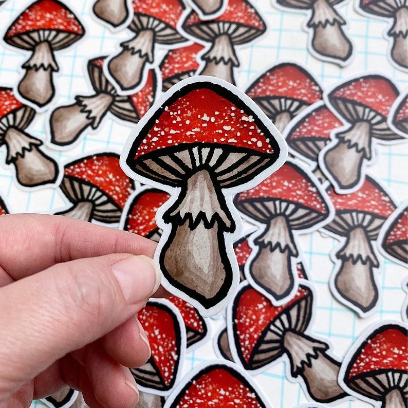 Mushroom sticker vinyl decal diecut amanita toadstool robayre image 0