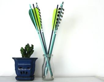 Neon Green Arrow Decor Wild Striped Pattern Shelf Decoration Archery Set
