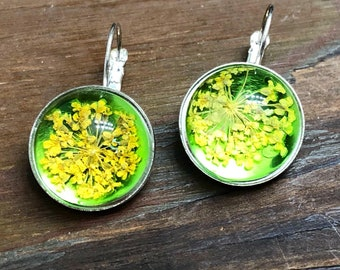 Yellow Pressed Flower Earrings with Glowing Green Background Set in Lever Back Ear Wires