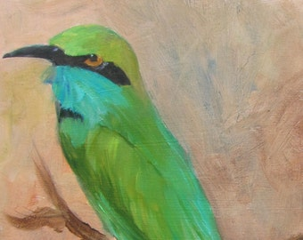 Adult Bee Eater  bird  7x5 framed Barbara Haviland