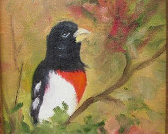Grosbeak, bird,oils canvas,framed, Barbara Haviland,Barbsgarden,TexasArtist
