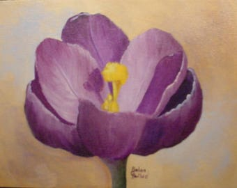 Purple Crocus,flowers,oils,Barbara Haviland,Texas Artist,Barbsgarden