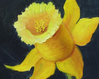 Daffodil Yellow  oil Barbara Haviland BarbsGarden flower