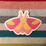 Rosy Maple Moth vinyl sticker