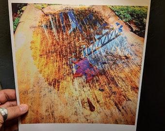 Wet Cardboard Whore Print