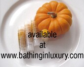 PUMPKIN Pie Vegan Lip Gloss-Balm- San Francisco Handmade from scratch by ME-looks orange but goes on clear or choose CINNAMON for just spice