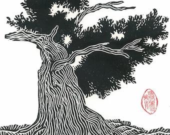 "Pine Tree Print - 9 1/2"" x 13"" Block Print - BRISTLECONE PINE - Black & White Desert Landscape Art"