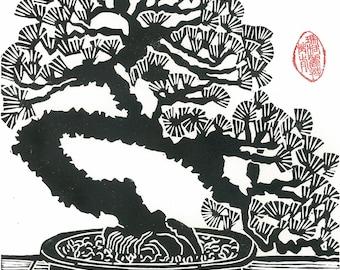 Linocut Print - BONSAI PINE TREE - Japanese Miniature Pine Print 9x13 - Ready to Ship