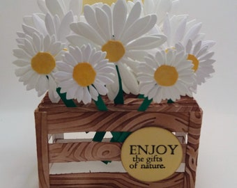 Sweet Daisy Box Greeting Card with Envelope