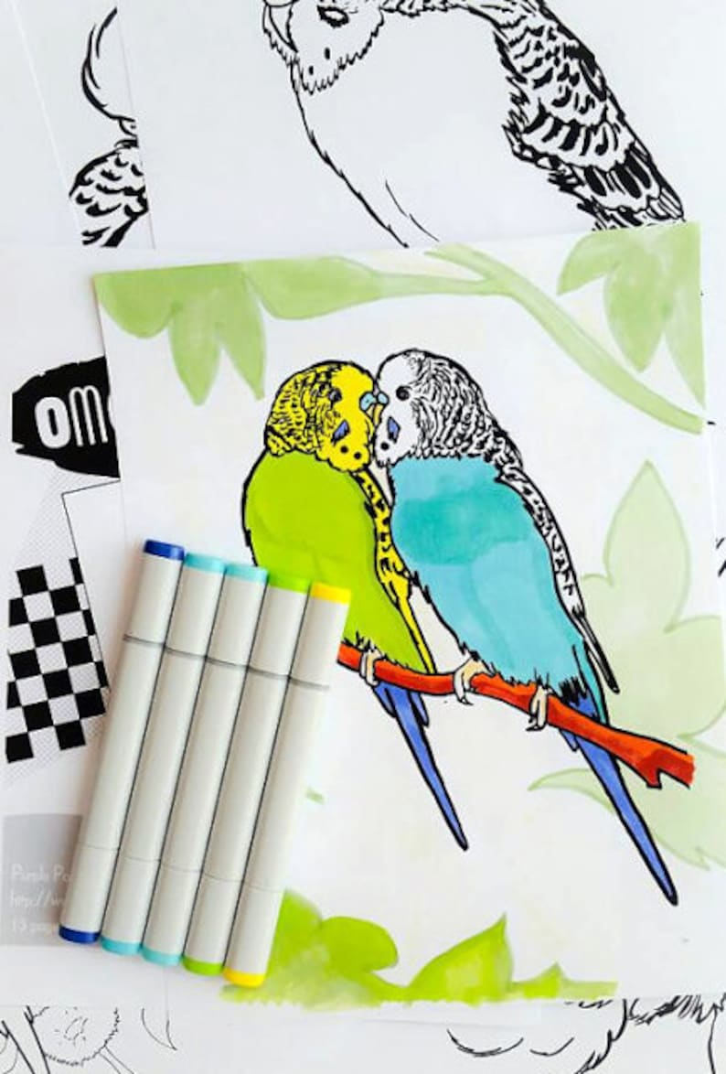 Budgies coloring book printable PDF bird colouring book image 0