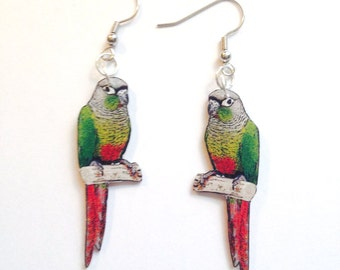 Green Cheeked Conure Earrings, Lapel Pin, Necklace or Keyring Handcrafted Plastic Jewelry Accessories Fashion Novelty Unique Gift USA Made