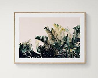 Palm Tree Print, Paradise #4, Boho Art, Green Leaf Print, Banana Leaf Photograph, Botanical Art Photograph, Oversize Art, Tropical Art Print