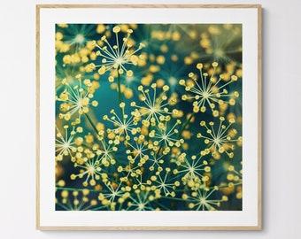 Kitchen Art, Botanical Print, Floral Photography, Food Photograph, Fine Art Photograph, Dill #5, Food Art, Herb Print, Kitchen Print