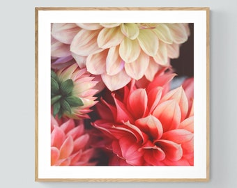 Dahlia Print, Macro Flower Photograph, Dahlia Photo, Medley, Floral Art, Botanical Print, Oversized Art, Flower Photograph, Nature Study