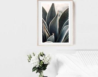 Agave Print, Nature Photograph, Succulent Photograph, Flower Photo, Dewdrop #1, Fine Art Photograph, Cactus Print, Green Art, Floral Print