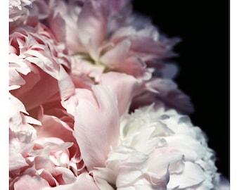 Nature Photograph - Peony Photograph - Flower Photograph - Spring - Efflorescence - Fine Art Photograph - Alicia Bock - Floral Art - Custom