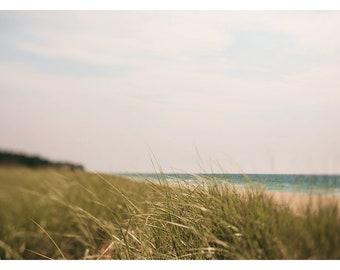 Landscape Art, Beach Art, Michigan Art, Dunegrass Print, Lake Michigan Beach Grass, Home Decor, Wall Art, Beach Print, Oversized Art