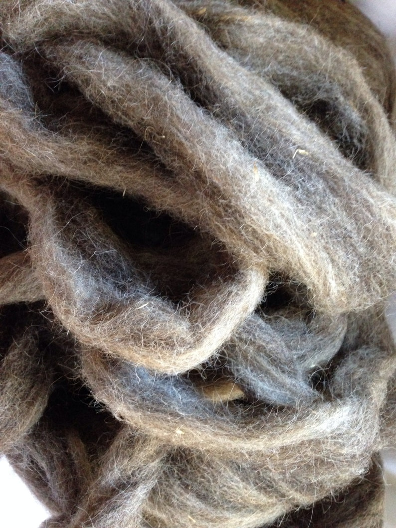 Guinea pig and Jacob Wool Roving Natural Color 1oz image 0