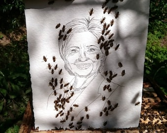 Hillary Clinton, original artwork by bees and Jan Karpíšek
