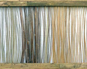 The Stems, dry stalks of nettles, goldenrods, hollyhocks et al., old planks from the garden, cca 101x166cm, 2015