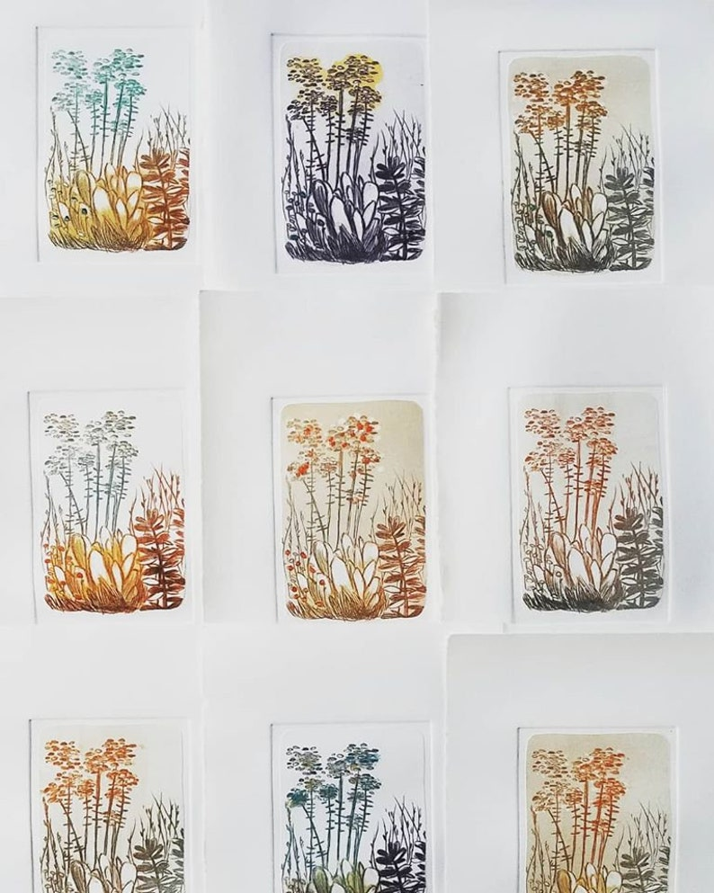 Hush 1-7 x 11 inch drypoint ETCHING monoprint of garden flowers plants foliage