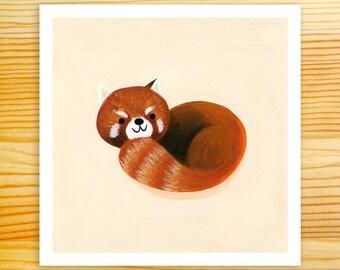 Red Panda 5x5 Art Print