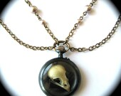 OSSUARY RELIC -- HALCYON -- Circa 1800s Victorian POCKET WATCH Necklace with BIRD SKULL Pearl Detailing BEAUTIFUL and a ONE OF A KIND WORK OF ART --- NOUVEAU MOTLEY EXCLUSIVE