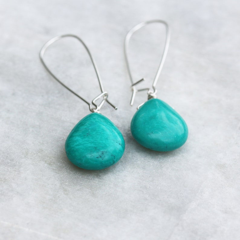 Turquoise Drop Earrings Turquoise Howlite Turquoise image 0