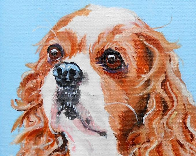 "Custom Pet Portrait, Cavalier King Charles Spaniel Art or any breed, 4"" x 6"", Cat Portrait, Artist, Pet Painting, Cat Painting Dog Painting"
