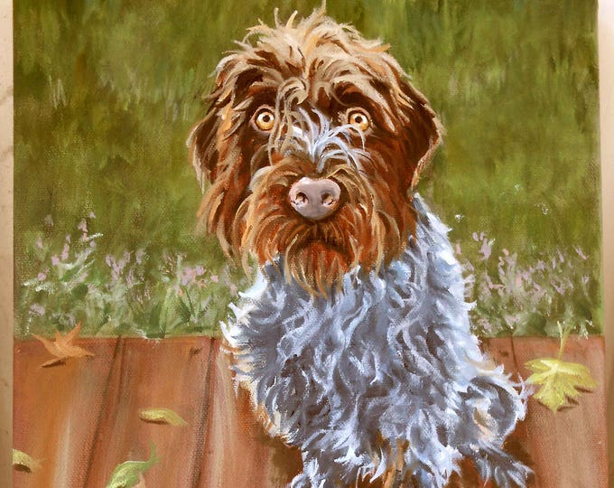 """Oil Painting Portrait of your dog, or any pet, Wire Haired Pointing Griffon, 11"""" x 14"""" size, Pet Portrait Custom, Portrait Painting Artist"""