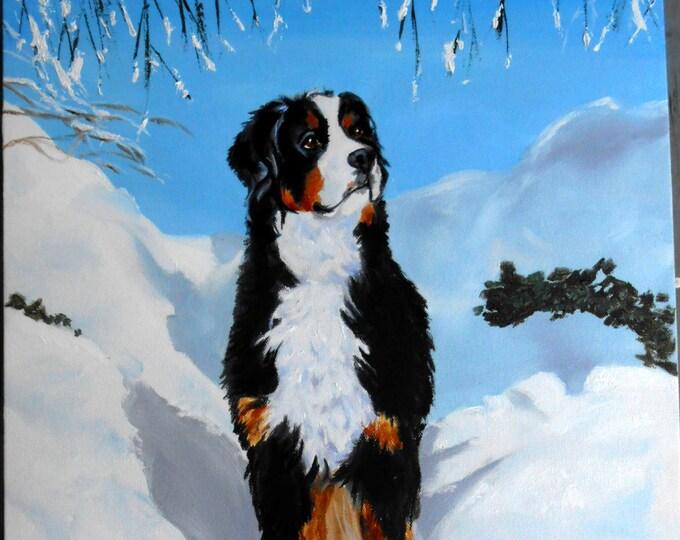 Bernaise Mountain Dog Custom Portrait Painting, Fine Art Oils on Canvas painted by Robin Zebley
