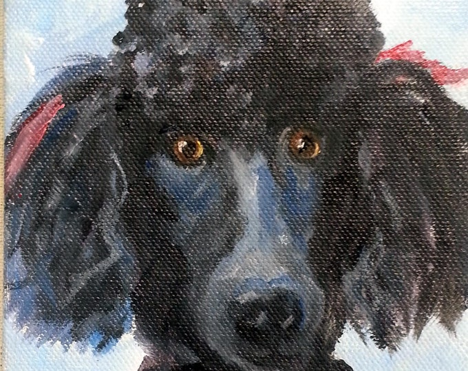 "Poodle Art or any breed Oil Painting Portrait Commission, 5"" x 7"", full of personality"