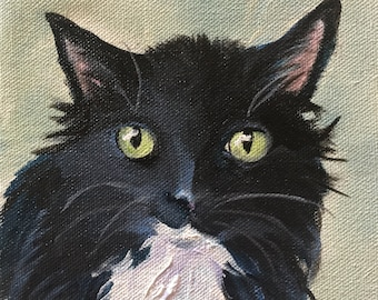 """Tuxedo Cat Painting, Custom Portrait Painted From your Photos, Large 16"""" x 16"""" Square Black and White Art,  by Robin Zebley"""