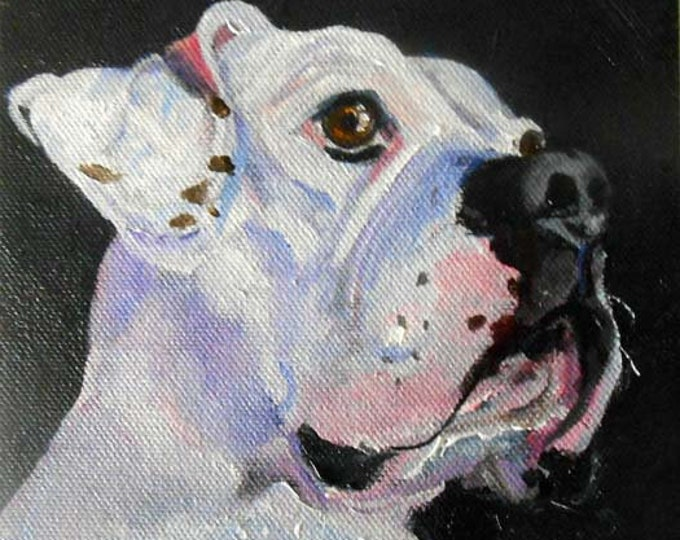 White Boxer Art Oil Painting Portrait, Custom on Canvas