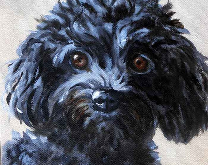 "Small Pet Portrait, Poodle or any breed, 5"" x 7"", Great Dog Gift painted by Robin Zebley Home fall"
