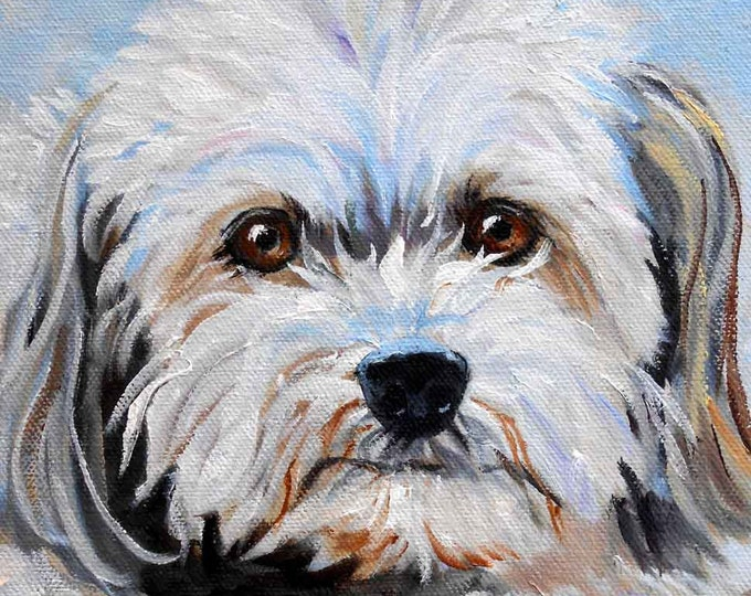 Pet Oil Painting on Canvas, hand painted original by dog artist Robin Zebley, Havanese or any breed