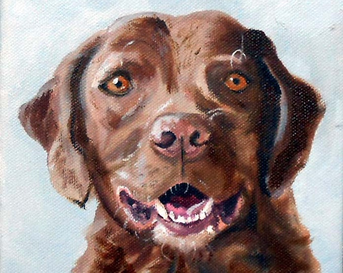 Chesapeake Bay Retriever Pet Portrait or any Breed Oil Painting by Robin Zebley