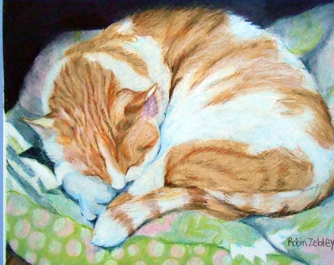 "Sleeping Kitty, 8 x 10"" Custom Cat Portrait Drawing, Orange and White Cat Art by artist Robin Zebley Home fall"