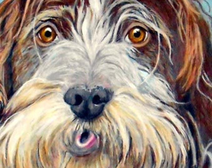 The Eyes Have It! Custom Pet Portrait Original Drawing, by artist Robin Zebley, Gift for Wire-Haired Pointing Griffon or any breed dog lover