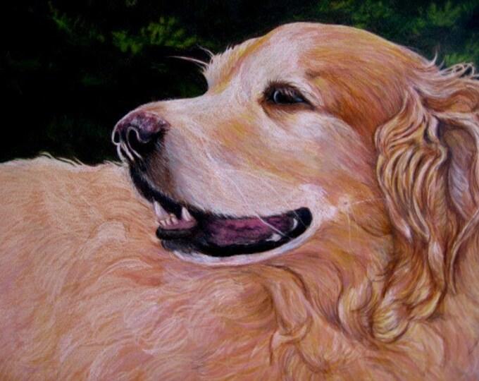 Portrait Drawing, Custom, Dog, Cat, People, Family Portrait Artist Gift Certificate